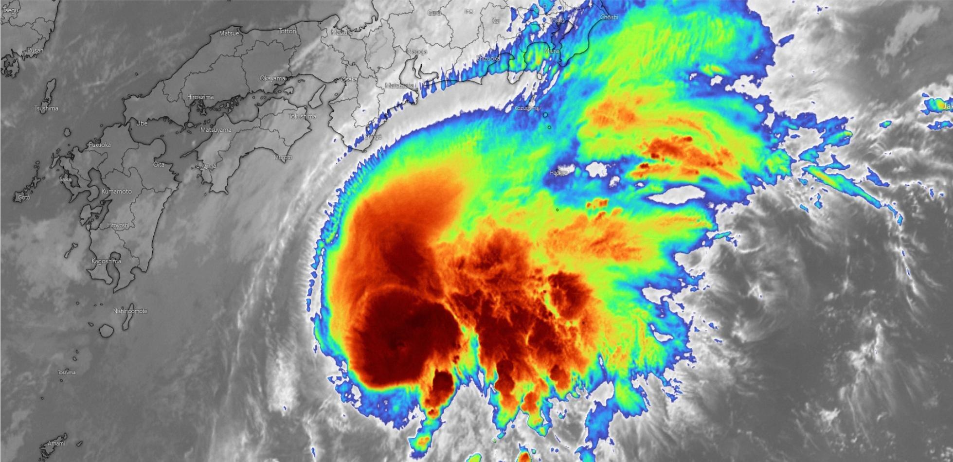 tajfun Dolphin