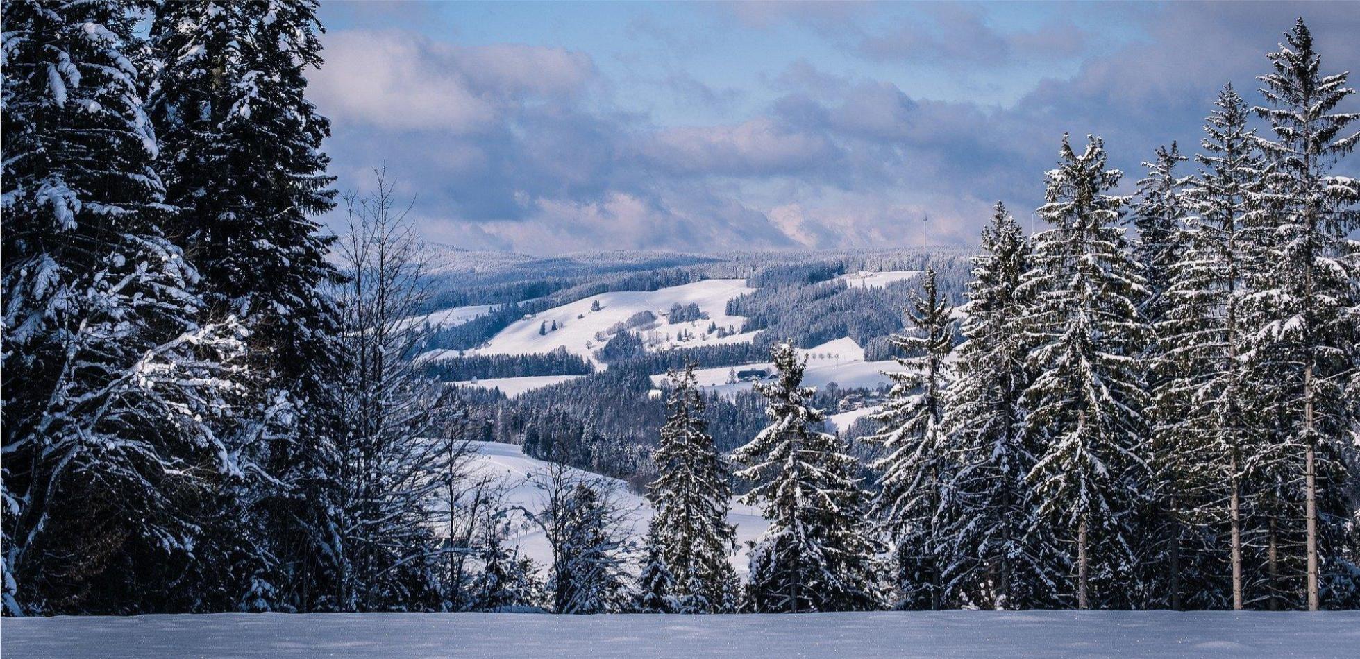 Śnieg i chłód w weekend. Prognoza pogody